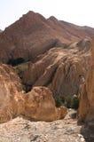 Een oase in de woestijn van de Sahara - Tozeur royalty-vrije stock fotografie
