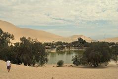 Een oase onder de wolken stock afbeeldingen