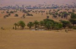 Een oase in woestijn stock foto's