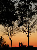 Een ogenblik dat bij de Horizon van de Zonsondergang staart Royalty-vrije Stock Foto