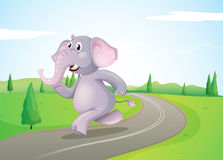 Een olifant die bij de weg lopen Royalty-vrije Stock Fotografie