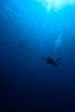 Een onderwaterfotograaf Stock Foto's