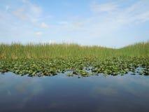 Een ongelooflijke mening van waterland en hemel Royalty-vrije Stock Foto's