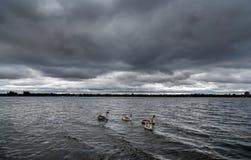 Een onweer die over een meer in Staffordshire, Engeland brouwen royalty-vrije stock foto