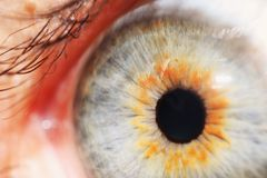 Een oog Stock Afbeelding