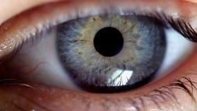 Een oog trilt zenuwachtig stock video