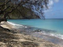 Een oorspronkelijk strand in de Caraïben stock video