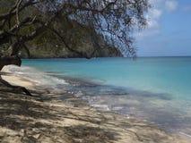 Een oorspronkelijk strand in de Caraïben stock footage