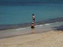 Een oorspronkelijk strand in de windwaartse eilanden stock video