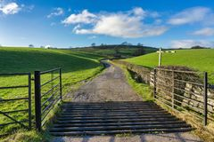 Een open poort en een veenet die tot een spoor van het land leiden Stock Afbeelding