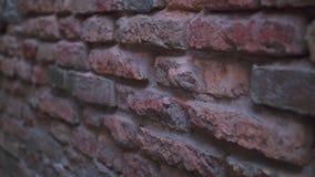 Een openluchtbakstenen muur stock video