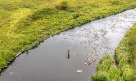 Een opgeheven mening van een mens in een rivier, vlieg visserij stock afbeelding