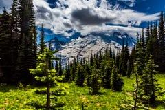 Een opvallende Mening van een Alpien Paradijs op Regenachtiger Onderstel. Stock Afbeelding