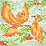 Een oranje vogel. Royalty-vrije Stock Foto's