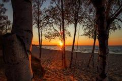Een oranje zonsondergang Stock Foto's