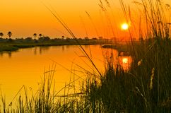 Een Oranje Zonsondergang over de Okavango-Delta Stock Afbeelding