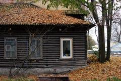Een oud blokhuis, het dak waarvan met de herfst behandeld is gaat weg Een combinatie van antiquiteit en een nieuw wit plastic ven stock afbeelding