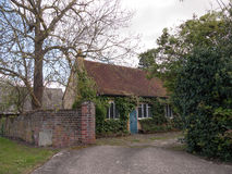 Een Oud Engels huis met Bladeren en Installaties Ivy Growing op B stock fotografie