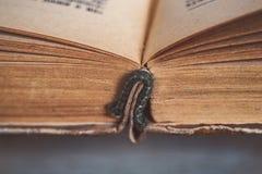 Een oud open boek, een foto met een close-up stock afbeelding