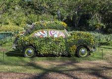 Een oud Volkswagen-insect is behandeld met pansies in Dallas Arboretum royalty-vrije stock afbeeldingen