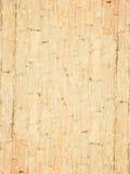 Een oude bakstenen muur Royalty-vrije Stock Afbeelding