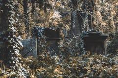 Een oude begrafenis op de oude begraafplaats royalty-vrije stock afbeelding