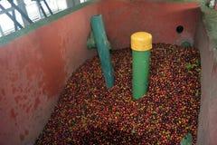 Een oude doos voor de inzameling van koffiebonen alvorens te sorteren gebruikt op landbouwbedrijven in Costa Rica stock afbeeldingen