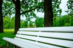 Een oude houten witte bank in het park tegen een achtergrond van onscherpe bomen stock foto