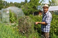 Een oude landbouwer met hooivorken stock afbeelding