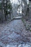 Een oude open buitensteentrap Steen, cementstappen van de oude trap met sporen van verwering en vernietiging Oud stock afbeeldingen