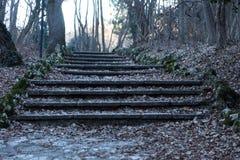 Een oude open buitensteentrap Steen, cementstappen van de oude trap met sporen van verwering en vernietiging Oud stock afbeelding