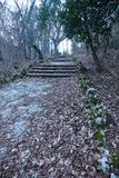 Een oude open buitensteentrap Steen, cementstappen van de oude trap met sporen van verwering en vernietiging Oud royalty-vrije stock afbeeldingen