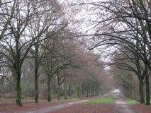 Een oude paardrijdenweg in Parc Bloemende Parijs, Parijs stock afbeelding