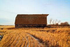Een oude schuur die een andere winter in Noord-Dakota overleefde Stock Afbeeldingen