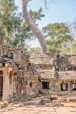 Een oude tempel in Angkor stock fotografie