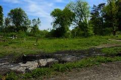 Een oude verlaten die begraafplaats, kruisen en graven met tal wordt overwoekerd royalty-vrije stock foto