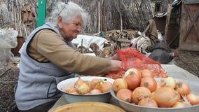 Een oude vrouw met grijs haar neemt uien op alvorens in de keuken, organische groenten, haar eigen gewas te koken stock footage