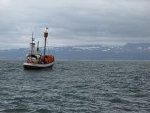 Een oude walvisvaarder die in Skjalfandi-baai in noordelijk IJsland varen dichtbij aan Husavik die walvissen zoeken stock foto's