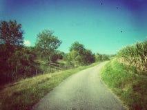 Een oude Weg die rond cornfield gaan stock foto's