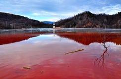 Een overstroomde kerk in een giftig rood meer stock foto