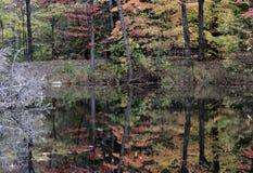 Een overweldigende herfstbezinning in Cleveland Metroparks - Ohio - de V.S. Stock Foto's