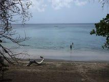 Een paar die van een mooi strand in de Caraïben genieten stock videobeelden