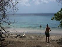 Een paar die van een mooi strand in de Caraïben genieten stock video
