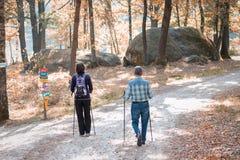 Een paar het lopen trog een park met wandelingsstokken bos, liefde, sport, jogging, sportieve gepensioneerde; royalty-vrije stock fotografie
