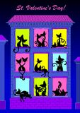 Een paar katten die op de vensters zitten. Royalty-vrije Stock Fotografie
