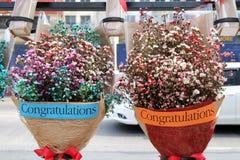 Een paar mooie kleine bloemen in een verpakking met de woordgelukwensen die op de stoep verkopen royalty-vrije stock foto