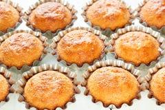 Een paar muffins in de bakselschotel Stock Fotografie