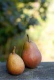 Een paar peren Stock Afbeeldingen