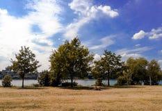Een paar twee mannetjes shirtless het besteden tijd samen op picknick door de Rijn-rivier in de stad van Bonn stock foto's