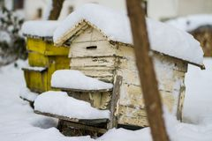 Een paar van sneeuw behandelde bijenbijenkorven Bijenstal in wintertijd Bijenkorven met sneeuw in wintertijd worden behandeld die royalty-vrije stock afbeeldingen